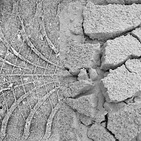 Drieluik sporen strand Terschelling van Watze D. de Haan