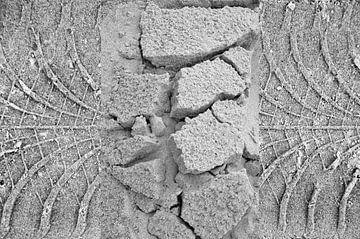 Drieluik sporen strand Terschelling van