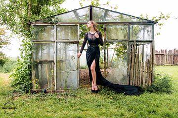 Couture im Gewächshaus von Alex Spinder