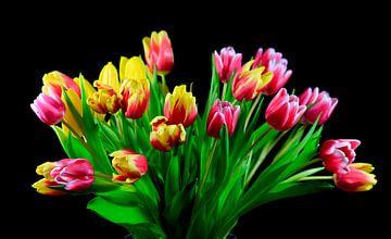 Malerische Tulpen von Thomas Jäger