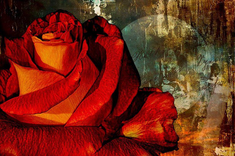Une rose pour l'amour sur Max Steinwald