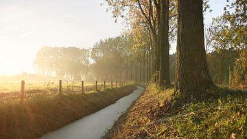 Nederlandse herfst ochtend von Mark Leeman