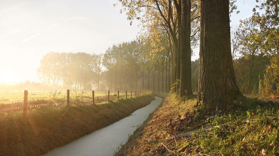 Nederlandse herfst ochtend van Mark Leeman
