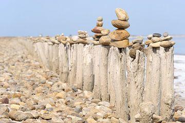 Steinmännchen auf Holzstämmen van Lars Tuchel
