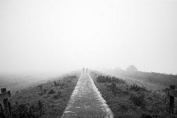 In de mist von Marieke Tromp
