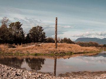 Totempfahl, Kanada von Daan Duvillier