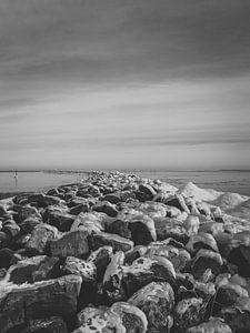robuuste winters landschap van Tom Knotter