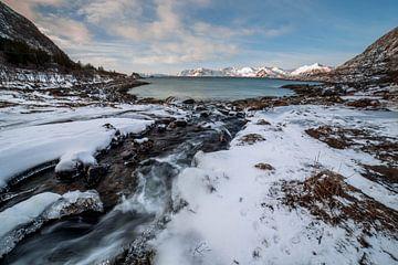 Uitzicht over de prachtige Noorse natuur van Ken Costers