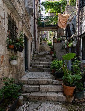 Allee mit Treppe in Dubrovnik von Daan Kloeg