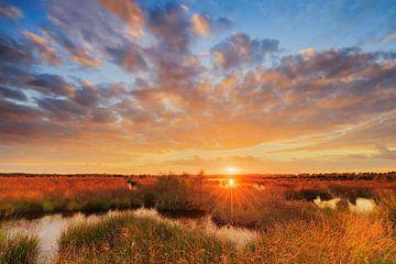 Zonsondergang boven het veen sur