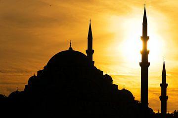Istanbul Moschee van Borg Enders