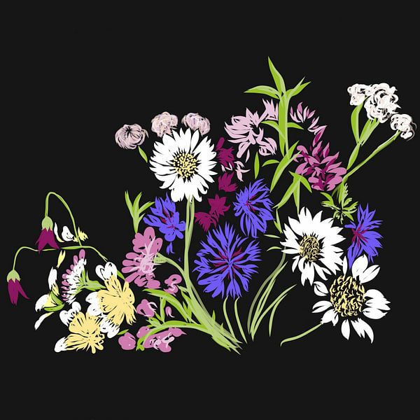 Blumen mit schwarzem Hintergrund von Joke te Grotenhuis