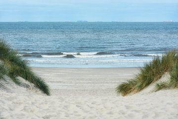 Poort naar het strand van