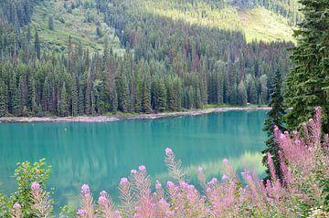 Blue lake Canada van Marcel Schouten