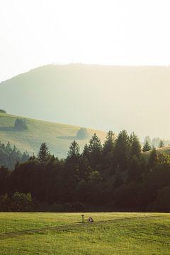 Landschaft im Schwarzwald von Veri Gutte