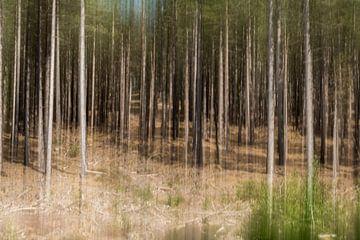 beweging van de bomen van Mandy Metz