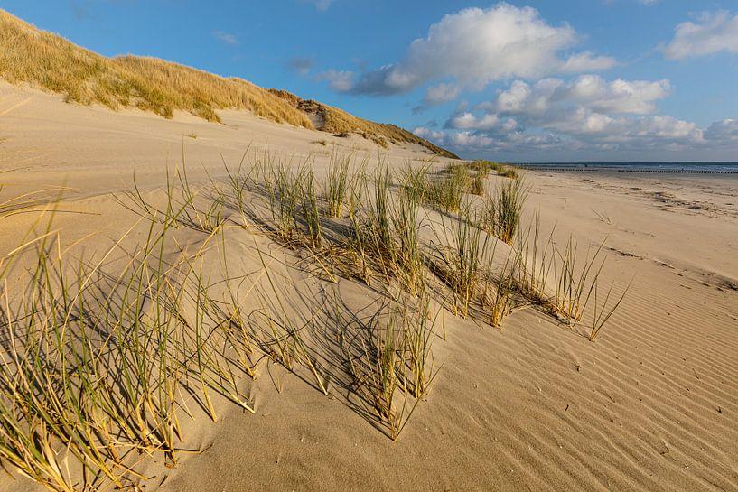 Les dunes d'Ameland sur Ron Buist