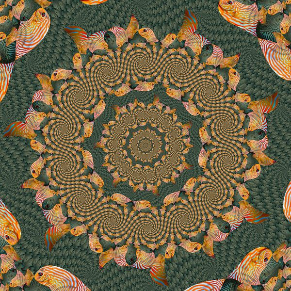Cirkels van Spiralen van Tropische Vissen II van Tis Veugen