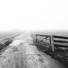 Foggy morning [3] van Jordy Kortekaas