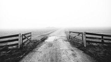 Foggy morning [3] van