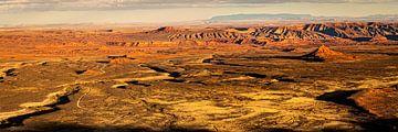 Panorama landschap Vallei van de Goden in Utah USA van Dieter Walther