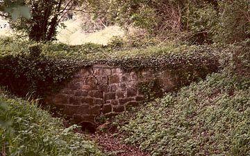 Eine rustikale alte Brücke über einen Bach von Wieland Teixeira