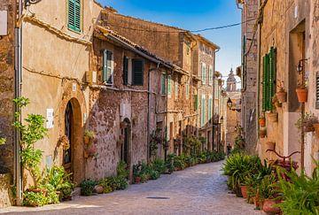 Mallorca Spanje, plantenstraat in het oude dorp Valldemossa van Alex Winter