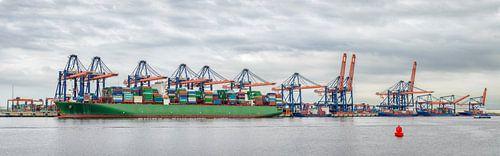 Haven Rotterdam Panorama van Sjoerd van der Wal