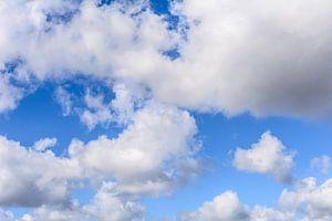 In de wolken van