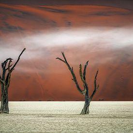 Mist in Deadvlei van Peter Poppe
