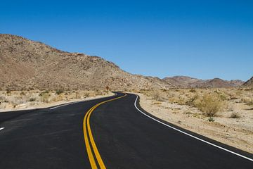 Weg door de woestijn van Sander Meijering