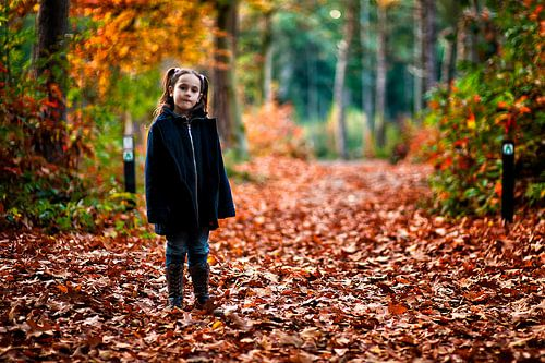 Meisje in de herfs van