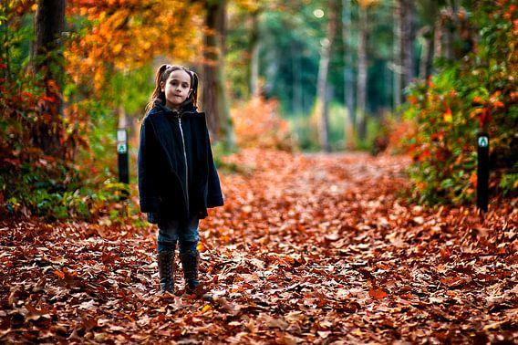 Meisje in de herfs