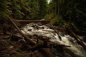 Kanadas Wasser von Luc Sijbers