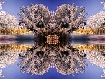 Wunderschöne Winterlandschaft van Peter Roder