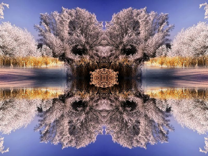 Wunderschöne Winterlandschaft von Peter Roder