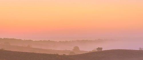 Posbank roze en oranje zonsopgang van Gea Gaetani d'Aragona