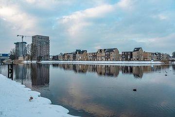 Piushaven gebied in de Winter gezien vanuit Natuurgebied Moerenburg van Freddie de Roeck