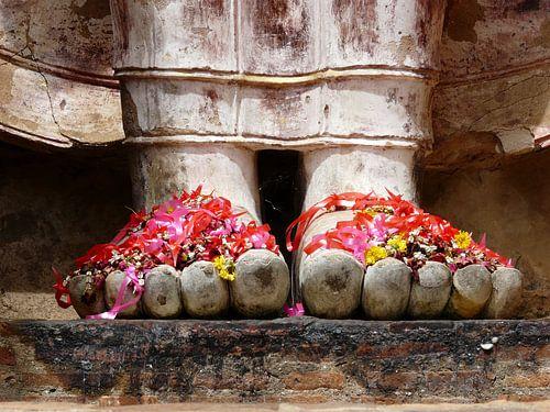 Buddha Füße Thailand von bird bee flower and tree