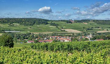 Village viticole de Großwinternheim près d'Ingelheim, en Rhénanie-du-Nord-Westphalie.