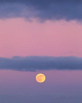 Volle Maan! van Karin de Bruin