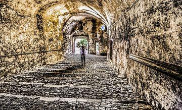Tunneldroom van