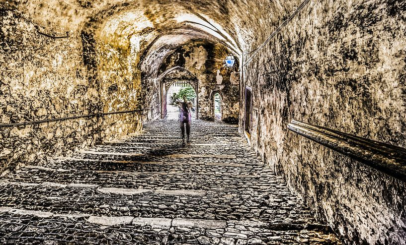 Tunneldroom van Harrie Muis