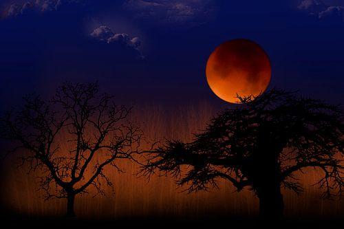 Bloed maan in landschap met bomen, maansverduistering
