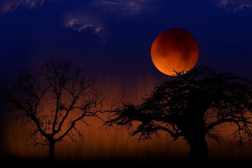 Bloedmaan in landschap met bomen, maansverduistering van Rietje Bulthuis