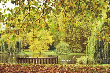 Herbst im St. James' Park, London, England von Daphne Groeneveld