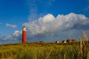 Vuurtoren van Texel van Wijnand Medendorp