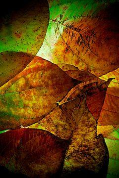 Herfstbladeren 6 van Henk Leijen