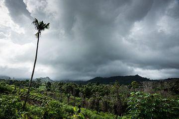 Ambon - Binnenland van Maurice Weststrate