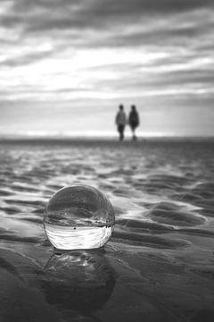 Die Zukunft in der Kristallkugel von Frans Nijland